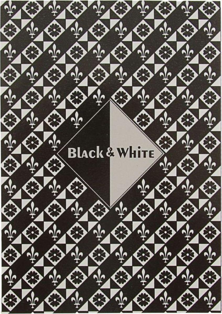 Лилия Холдинг Планшет для эскизов Черный и белый 15 листов2070583
