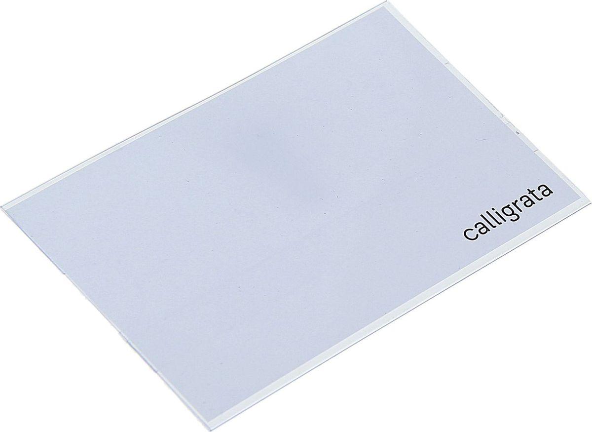 Calligrata Бейдж горизонтальный 5,5 х 8,8 см1293693Бейдж стал неотъемлемым атрибутом любого офиса или филиала компании и является визитной карточкой сотрудника, уважающего своего клиента. Горизонтальный бейдж Calligrata изготовлен из мягкого прозрачного пластика, внутрь которого помещается информационный вкладыш. Фиксируется на одежде при помощи металлического зажима и булавки.