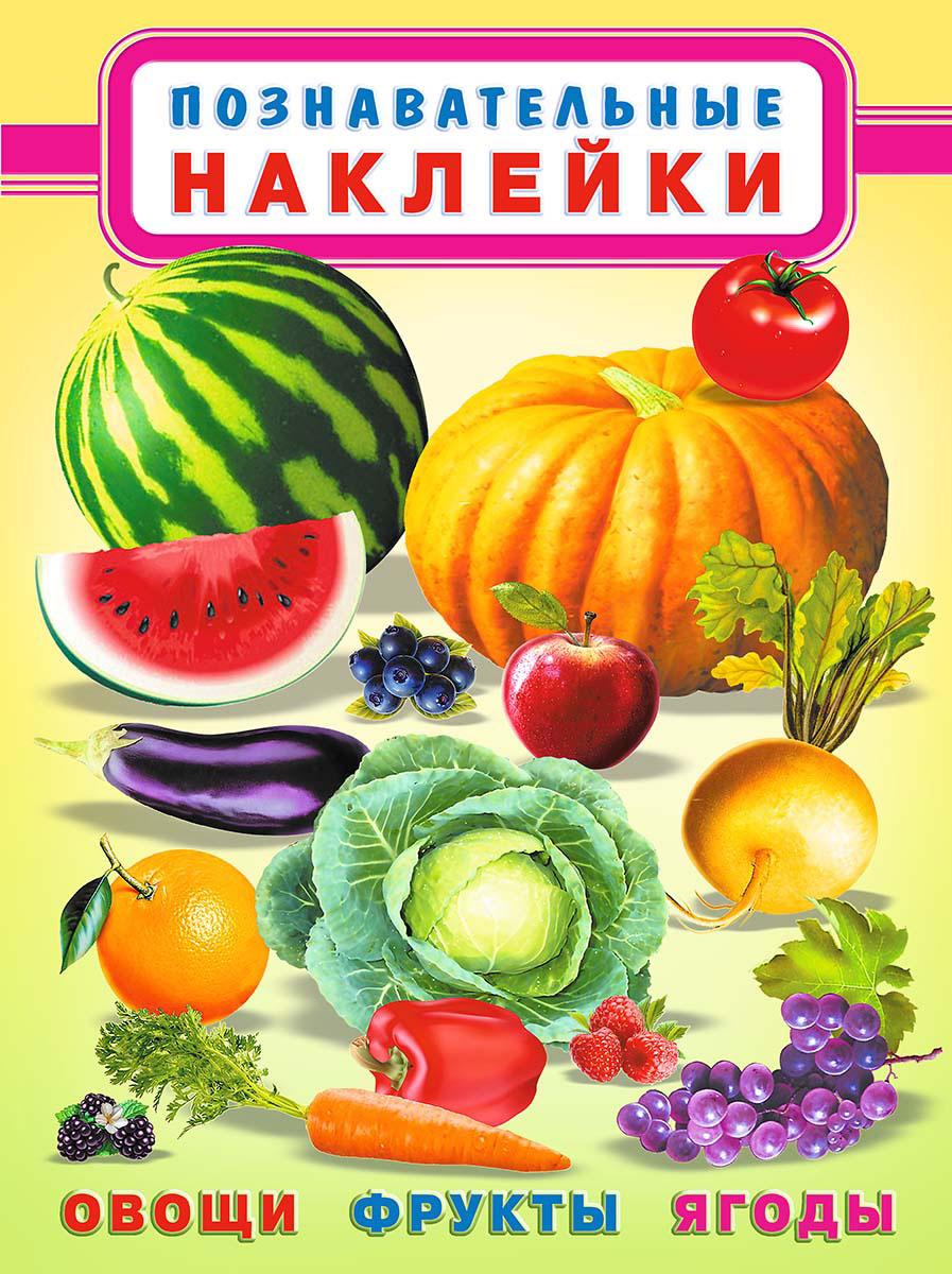 Купить Овощи, фрукты, ягоды. Познавательные наклейки