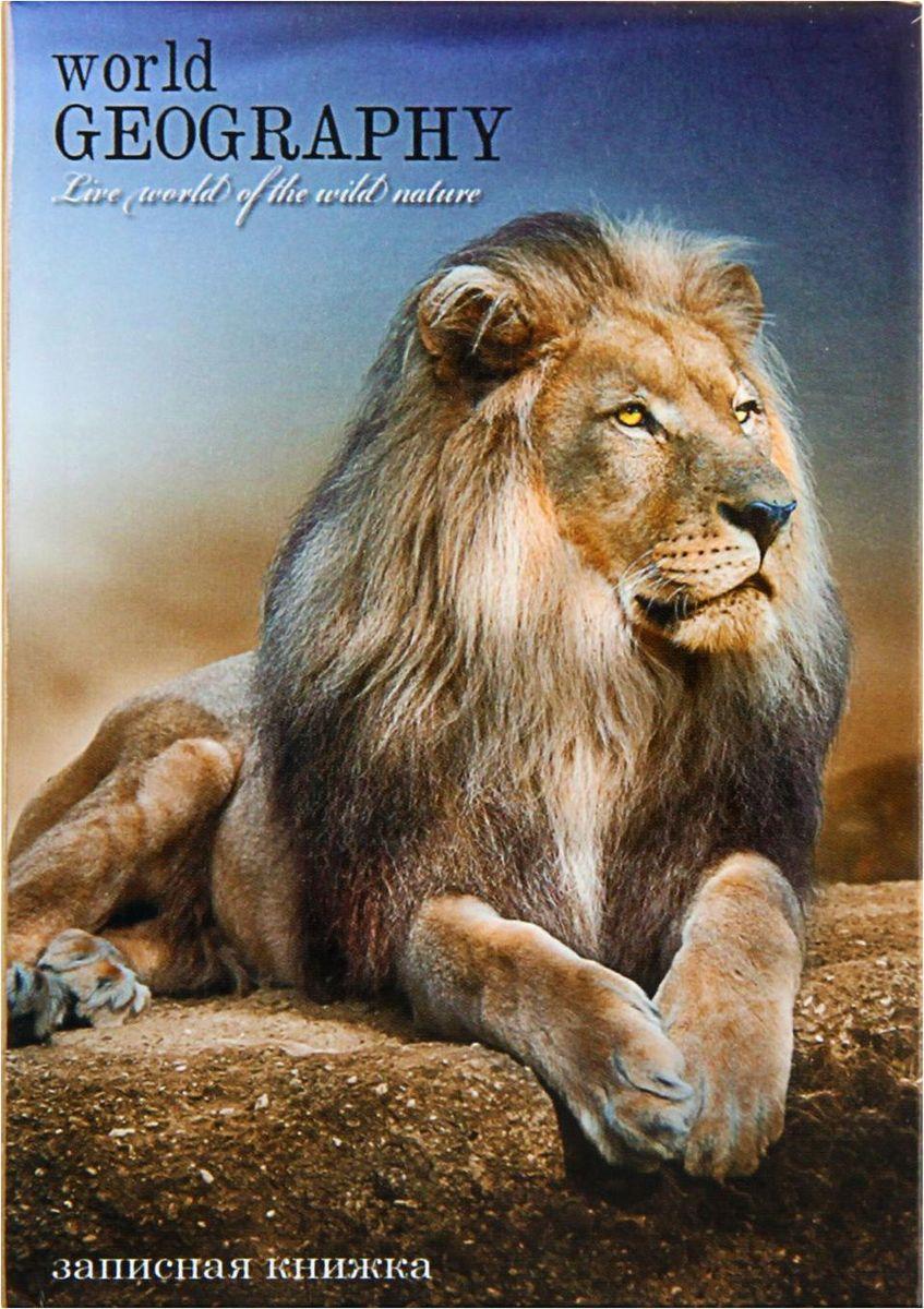 Profit Записная книжка Величественный лев 48 листов