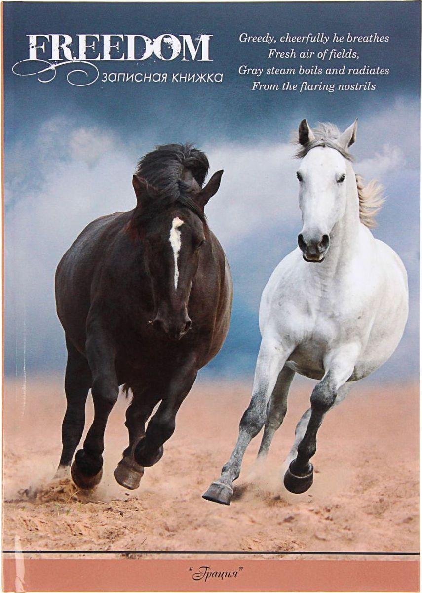 Profit Записная книжка Черная и белая лошадь 64 листа1211516Записная книжка Profit Черная и белая лошадь — компактное и практичное полиграфическое изделие, предназначенное для разного рода записей и заметок.Такой предмет прекрасно подойдёт для фиксации повседневных дел. Это канцелярское изделие отличается красочным оформлением и придётся по душе как взрослому, так и ребёнку.