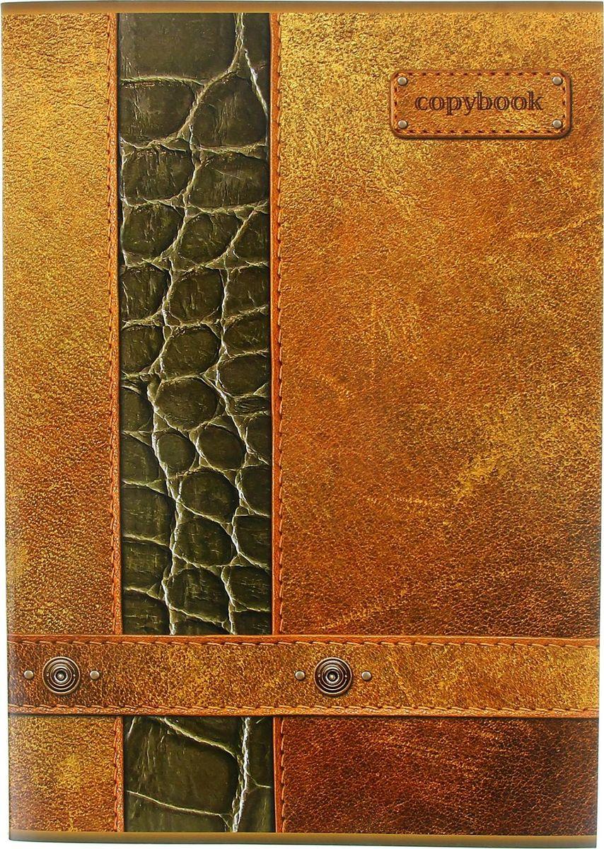 ПЗБФ Тетрадь Кожа 80 листов в клетку1021073Тетрадь ПЗБФ Кожа формата А4 отлично подойдет для занятий студенту.Обложка коричневого цвета, выполненная из плотного картона, позволит сохранить тетрадь в аккуратном состоянии на протяжении всего времени использования.Внутренний блок тетради, соединенный скрепками, состоит из 80 листов белой бумаги в голубую клетку без полей.
