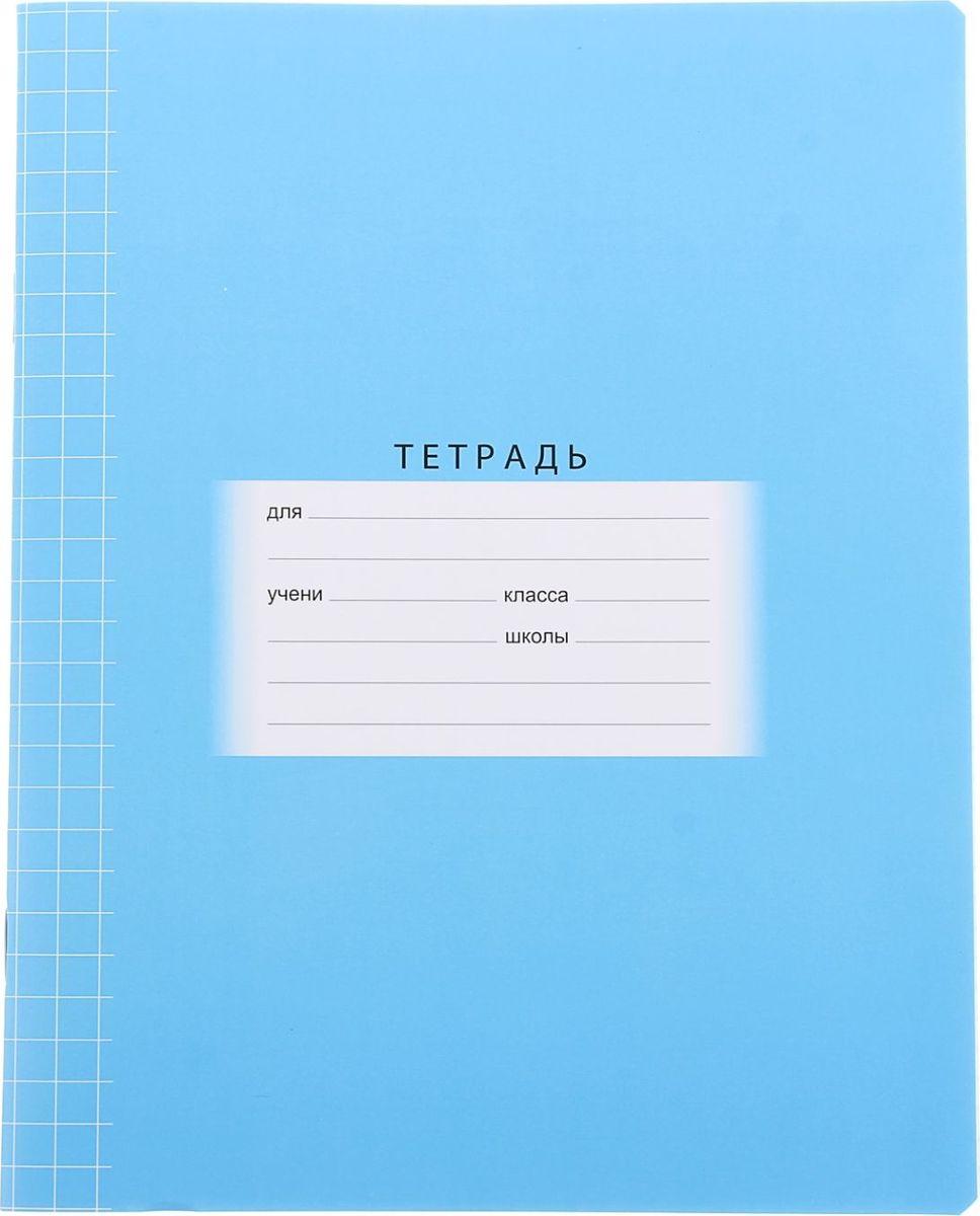 BG Тетрадь Школьная 12 листов в клетку цвет голубой1050133Тетрадь BG Школьная идеально подойдет для занятий любому школьнику.Обложка с закругленными углами, выполненная из картона голубого цвета, сохранит тетрадь в аккуратном состоянии на протяжении всего времени использования. Внутренний блок состоит из 12 листов белой бумаги в клетку с полями. На задней обложке тетради представлены таблица умножения, меры длины, площади, объема и массы.