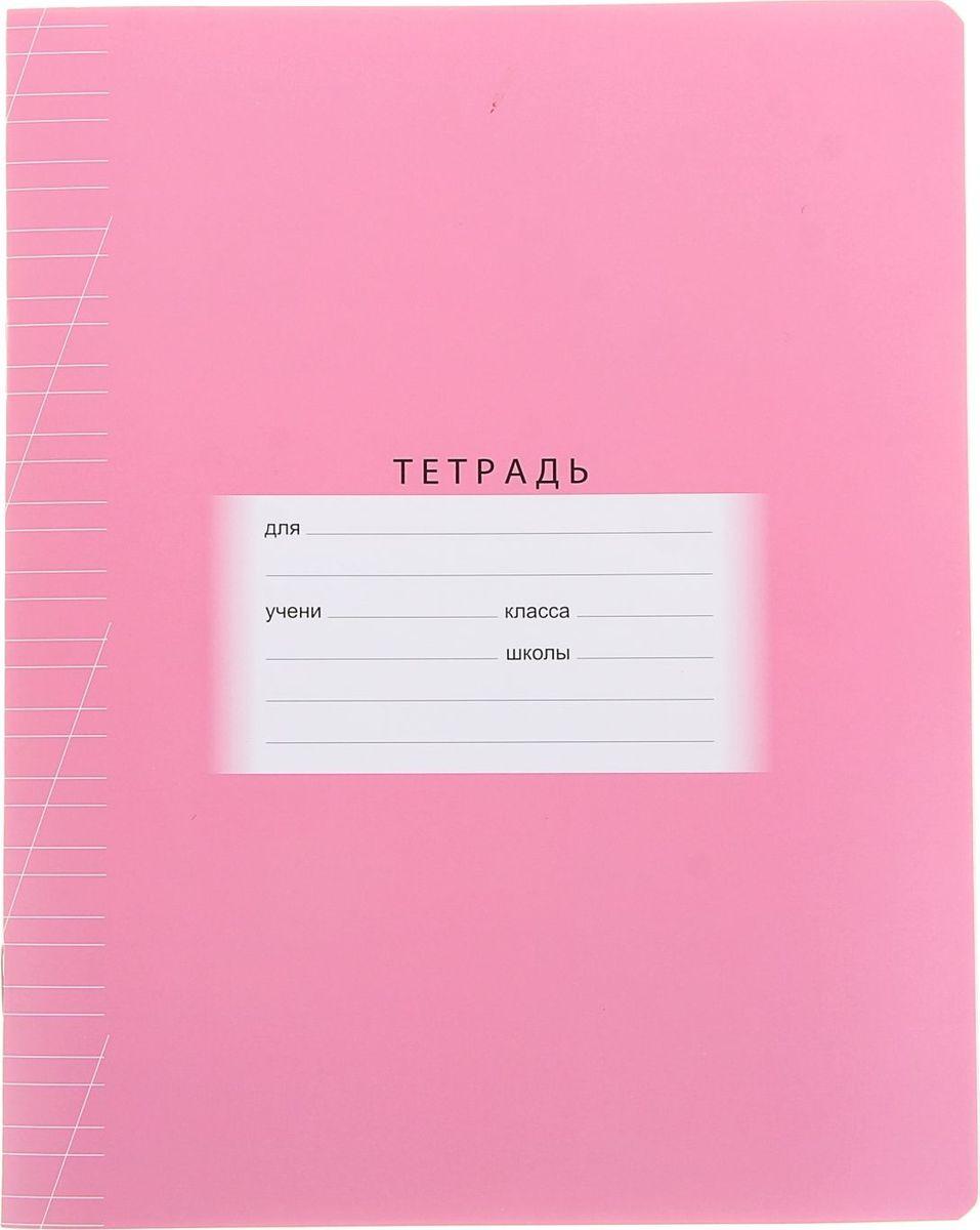 BG Тетрадь Школьная 12 листов в косую линейку цвет розовый1050134Тетрадь BG Школьная идеально подойдет для занятий первокласснику.Плотная обложка с закругленными углами, выполненная из мелованного картона розового цвета, сохранит тетрадь в аккуратном состоянии на протяжении всего времени использования. Внутренний блок состоит из 12 листов белой бумаги в косую линейку с полями. С помощью этой тетради малыши учатся красиво и аккуратно писать, соблюдая правильный размер и наклон своих первых письменных букв.