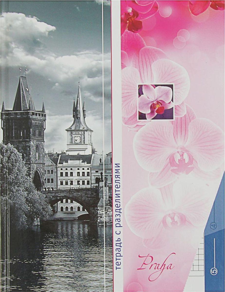 Апплика Тетрадь Прага 80 листов в клетку2044519