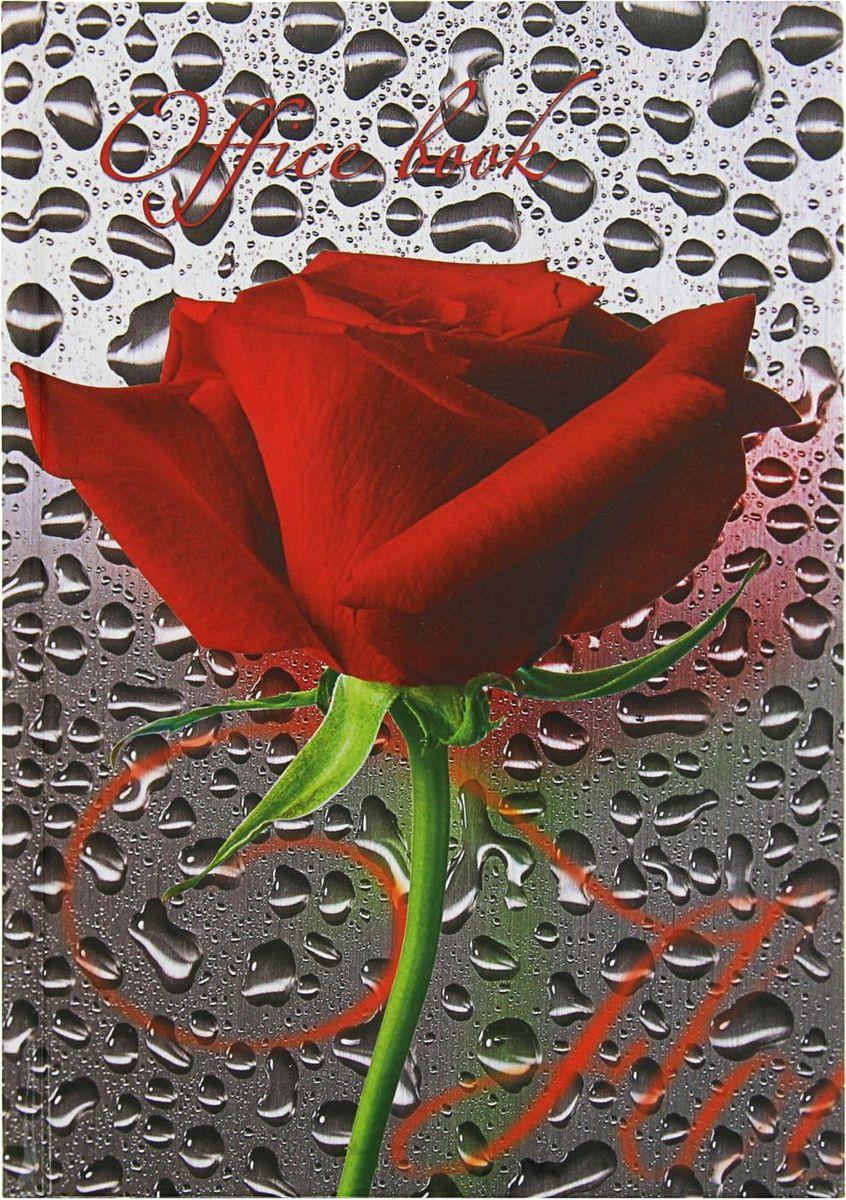 Бриз Тетрадь Алая роза 160 листов в клетку