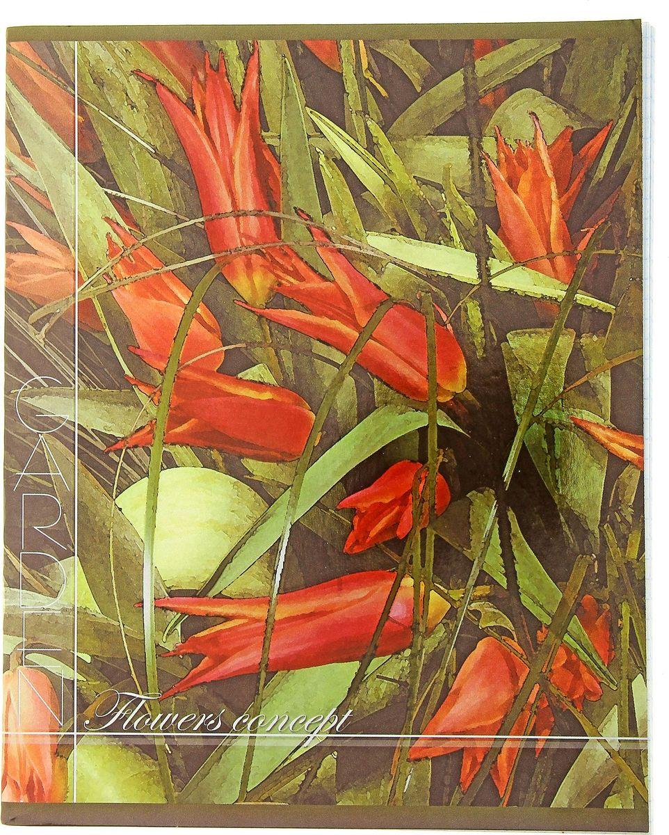 ТетраПром Тетрадь Акварельные цветы 48 листов в клетку797947Тетрадь ТетраПром Акварельные цветы пригодится и школьникам-старшеклассникам, истудентам. Обложка, выполненная из картона, позволит сохранить тетрадь ваккуратном состоянии на протяжении всего времени использования. Внутреннийблок состоит из 48 листов в клетку.