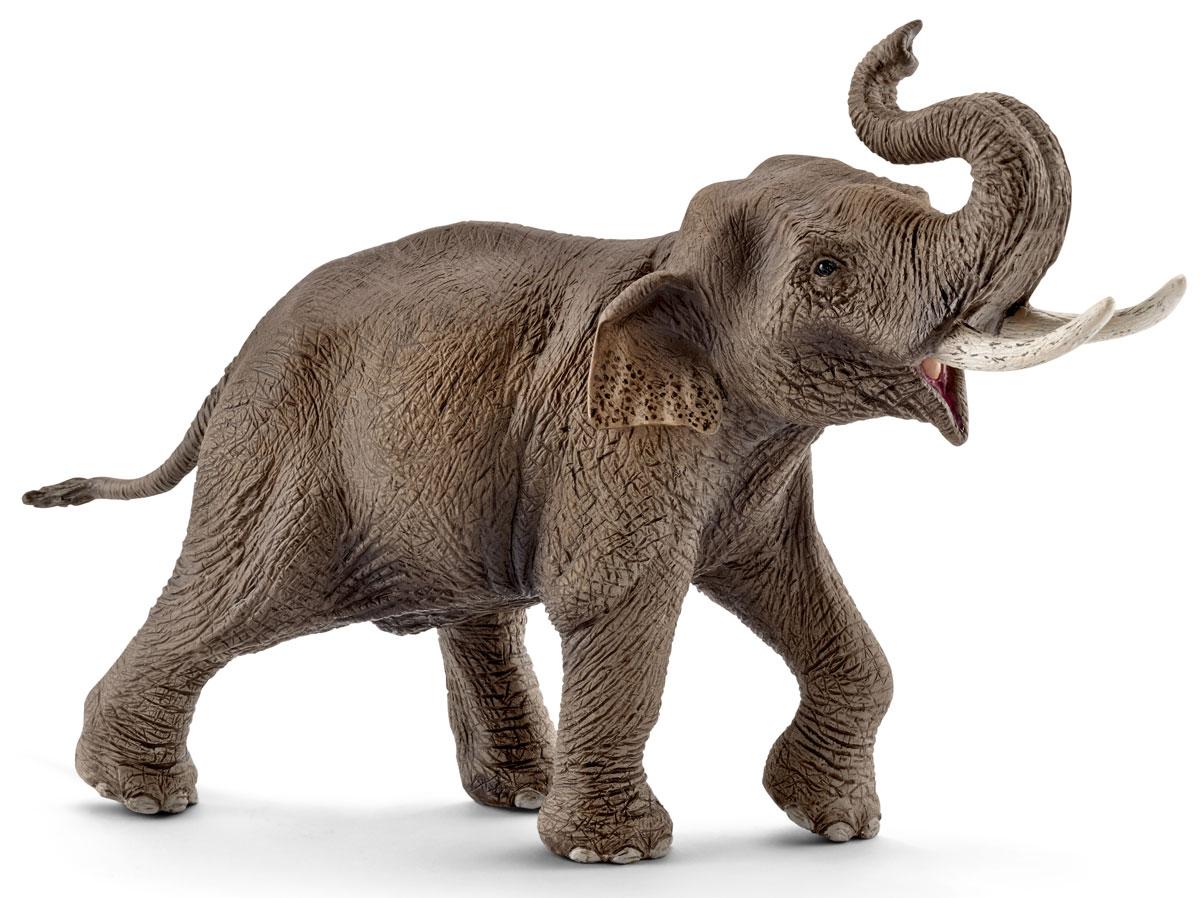 Schleich Фигурка Азиатский слон самец фигурки игрушки tolo фигурка пещерная девочка