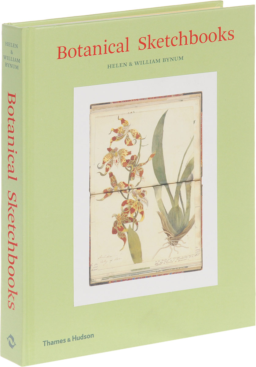Botanical Sketchbooks the art of adding and the art of taking away – selections from john updike s manuscripts