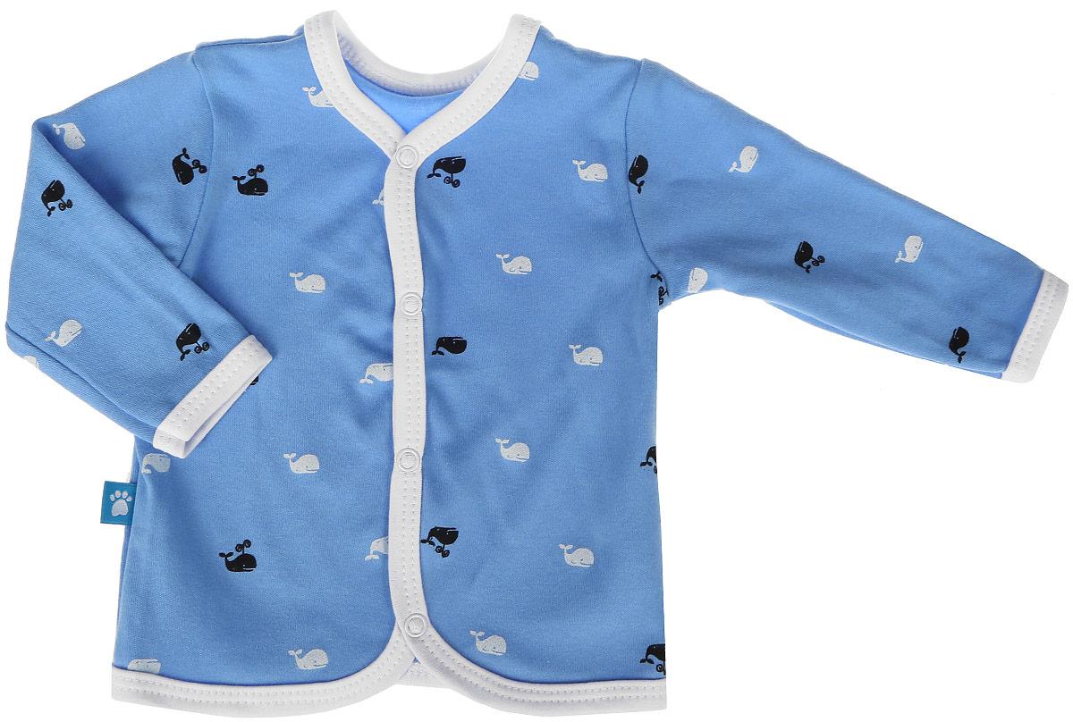Кофточка для мальчика КотМарКот, цвет: синий, белый. 7111. Размер 807111Кофточка для мальчика КотМарКот выполненаиз качественного материала. Модель с длинными рукавами застегивается на кнопки.