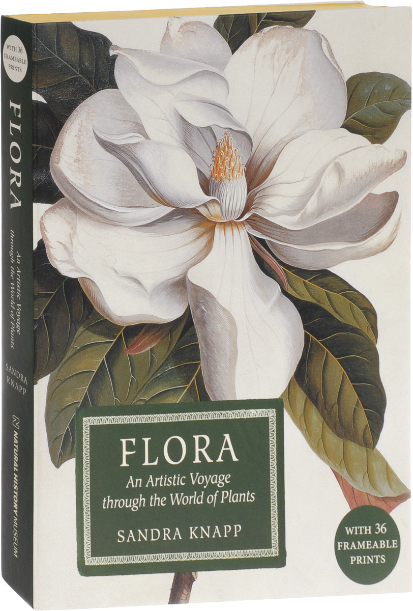 Flora: An Artistic Voyage Through the World of Plants london the illustrated history