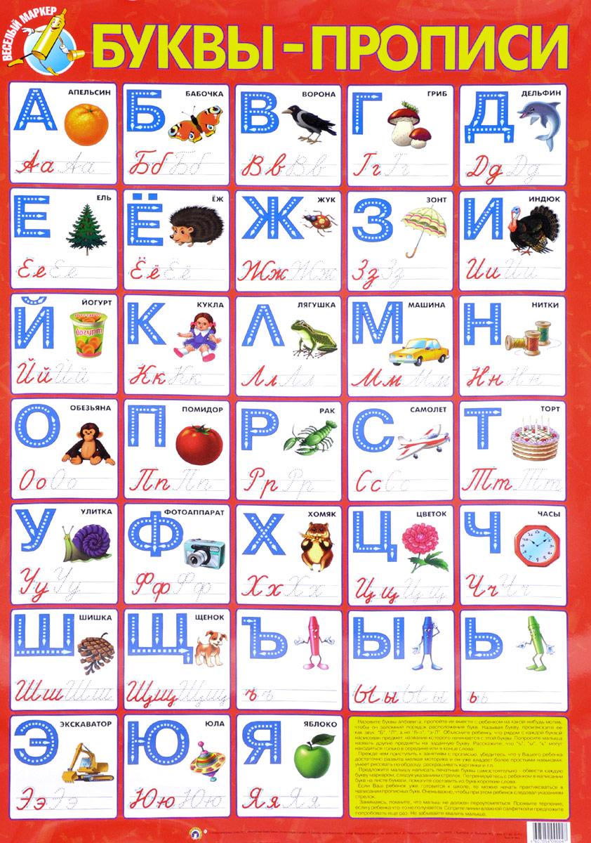 Буквы-прописи. Плакат обучающие плакаты маленький гений плакат буквы прописи