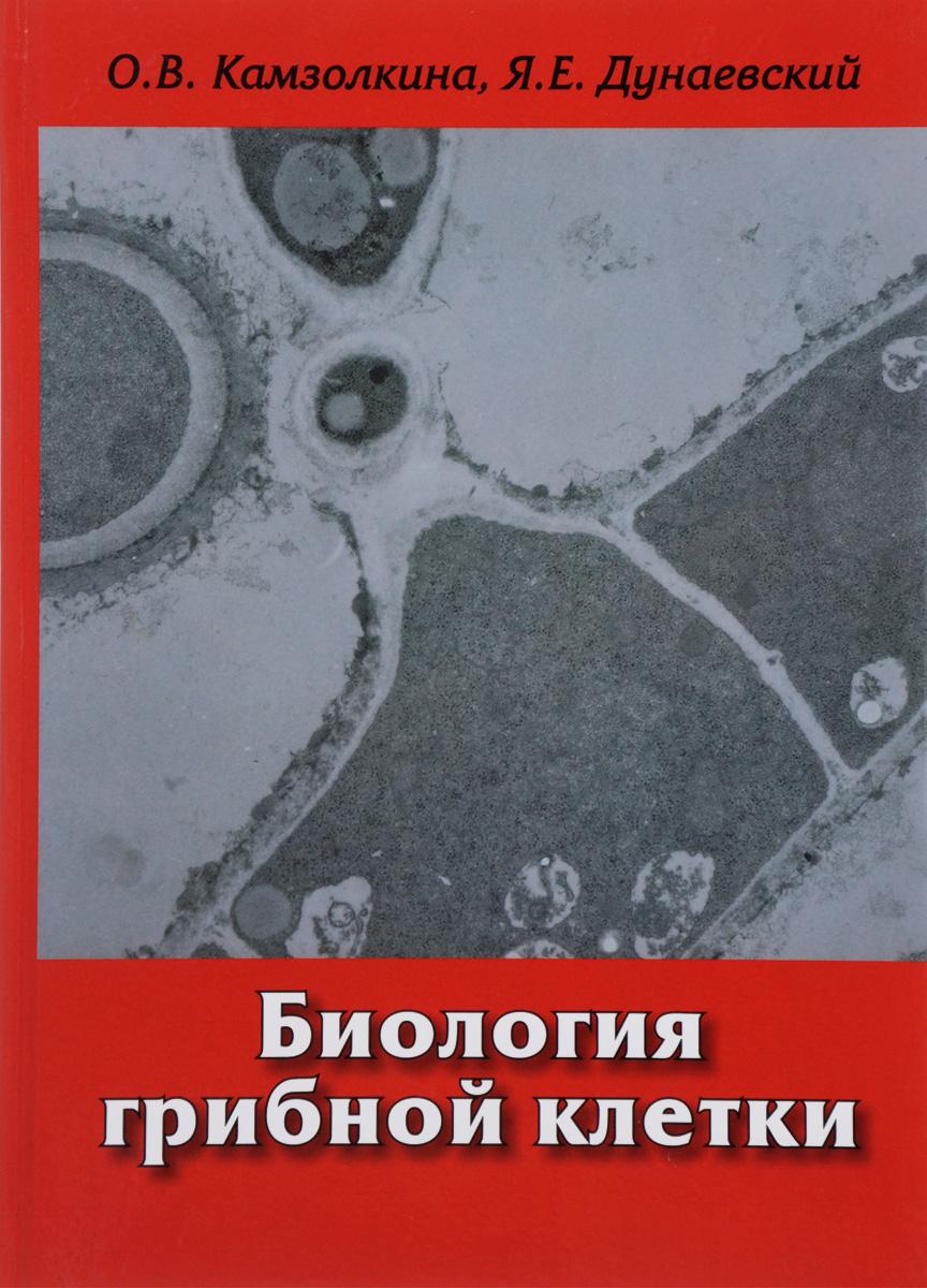 О. В. Камзолкина, Я. Е. Дунаевский Биология грибной клетки. Учебное пособие мицелий грибов груздь белый 60мл
