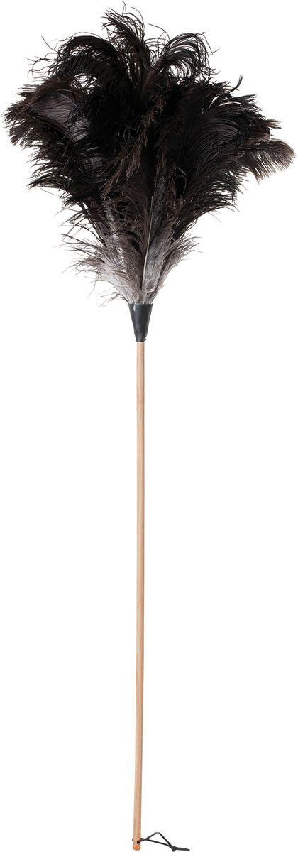 Щетка для пыли Redecker, 110 см468803Универсальная щетка для уборки пыли. Выполнена из натуральной древесины, кожи и страусиного пера. Имеет удлиненную форму, за счет чего позволяет легко дотягиваться до потолка и верхних полок. Благодаря особой структуре страусиных перьев щетка обладает невероятной легкостью. Она идеально подходит для уборки стеклянных предметов и поверхностей, хрупких вещей и маленьких объектов, которые склонны падать даже от малейшего прикосновения обычной щётки. Кроме того, изделие не требует специального ухода: просто встряхните щетку после использования – и она снова готова к работе.Длина – 110 см. На конце ручки находится небольшой ремешок для удобного вертикального хранения.