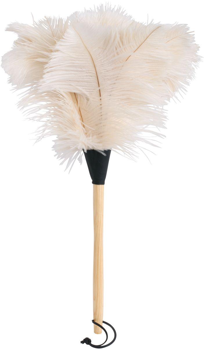 Щетка для пыли Redecker, 50 см. 468809468809Универсальная щетка для уборки пыли. Выполнена из натуральной древесины, кожи и страусиного пера. Благодаря особой структуре страусиных перьев щетка обладает невероятной легкостью. Она идеально подходит для уборки стеклянных предметов и поверхностей, хрупких вещей и маленьких объектов, которые склонны падать даже от малейшего прикосновения обычной щётки. Кроме того, изделие не требует специального ухода: просто встряхните щетку после использования – и она снова готова к работе.Длина – 50 см. На конце ручки находится небольшой ремешок для удобного вертикального хранения.