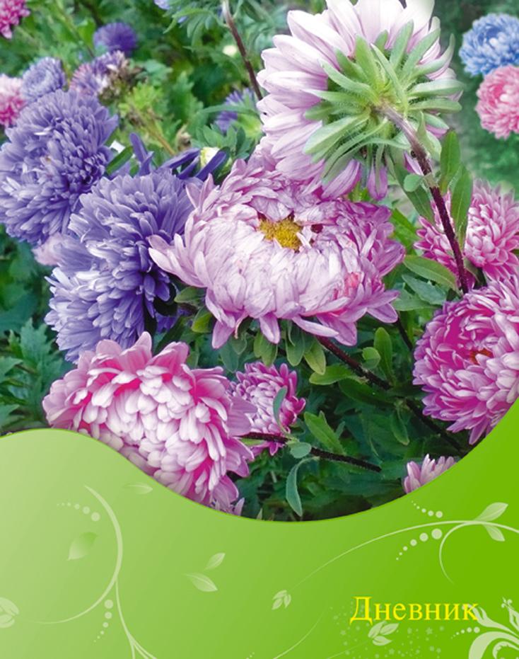 Апплика Дневник школьный Цветы С1558-40 б д сурис фронтовой дневник дневник рассказы