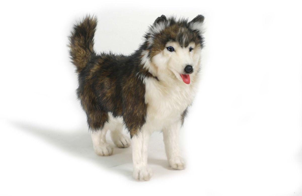 Hansa Мягкая игрушка Собака породы Сибирской Хаски 40 см