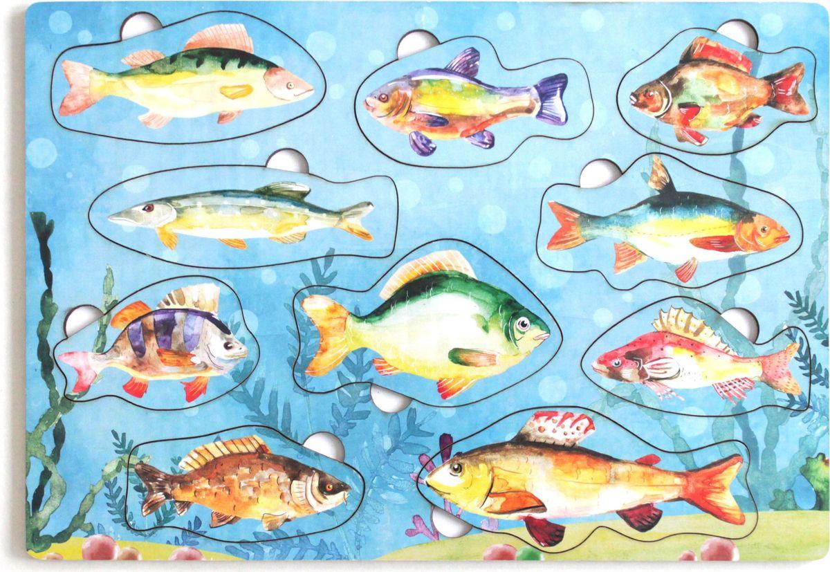 Игрушки Тимбергрупп Рамка-вкладыш Рыбы России рос джанин еда не проблема как оставться в мире с собой и собственным телом