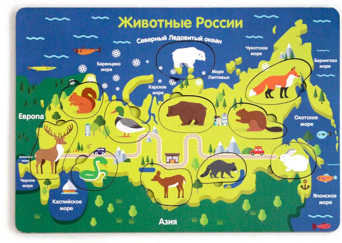 Игрушки Тимбергрупп Рамка-вкладыш Животные России рос джанин еда не проблема как оставться в мире с собой и собственным телом