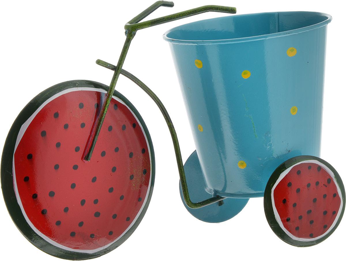 Кашпо декоративное Феникс-Презент Красный арбуз, 22,5 х 10,5 х 14 см43874Декоративное кашпо Феникс-Презент Красный арбуз выполнено из черного окрашенного металла в виде трехколесного велосипеда с красочным оформлением. Оригинальное кашпо предназначено для выращивания цветов, трав, растений. Благодаря такому кашпо вы сможете украсить вашу комнату, офис, сад и другие места. Общий размер изделия: 22,5 х 10,5 х 14 см.Диаметр кашпо: 10,5 см.Высота кашпо: 10 см.