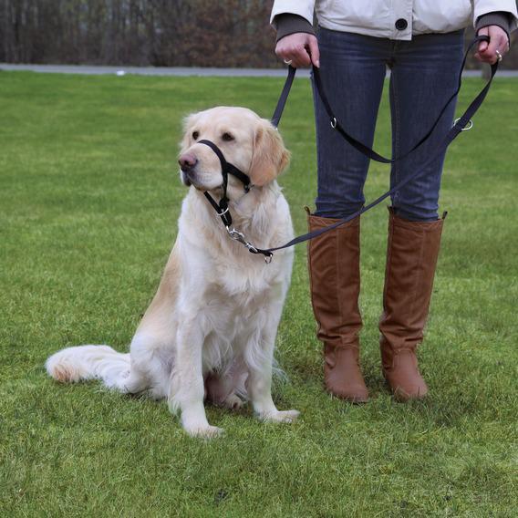 """Намордник тренировочный """"Trixie"""", обхват морды 40 см, длина шейного поводка 46-58 см. Размер XL"""