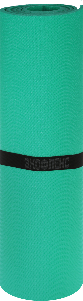 Коврик туристический Пенолон, цвет: зеленый, 180 х 60 х 0,8 см коврик домашний sunstep цвет синий 140 х 200 х 4 см