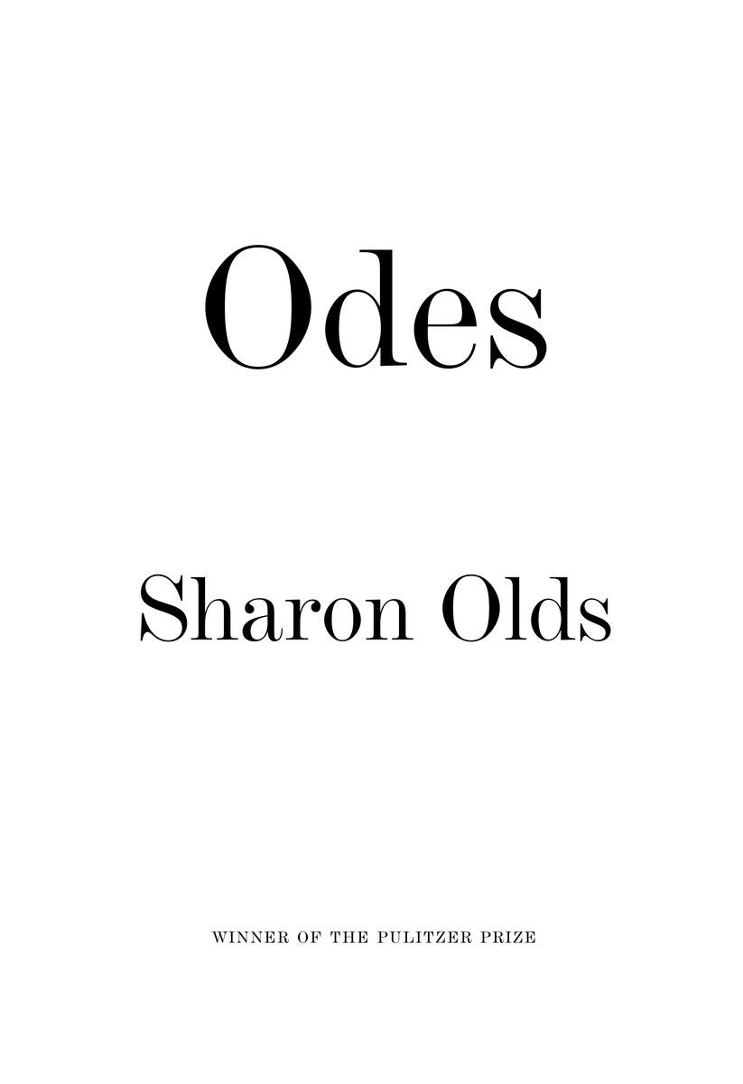 Odes постер ode to the summer orange