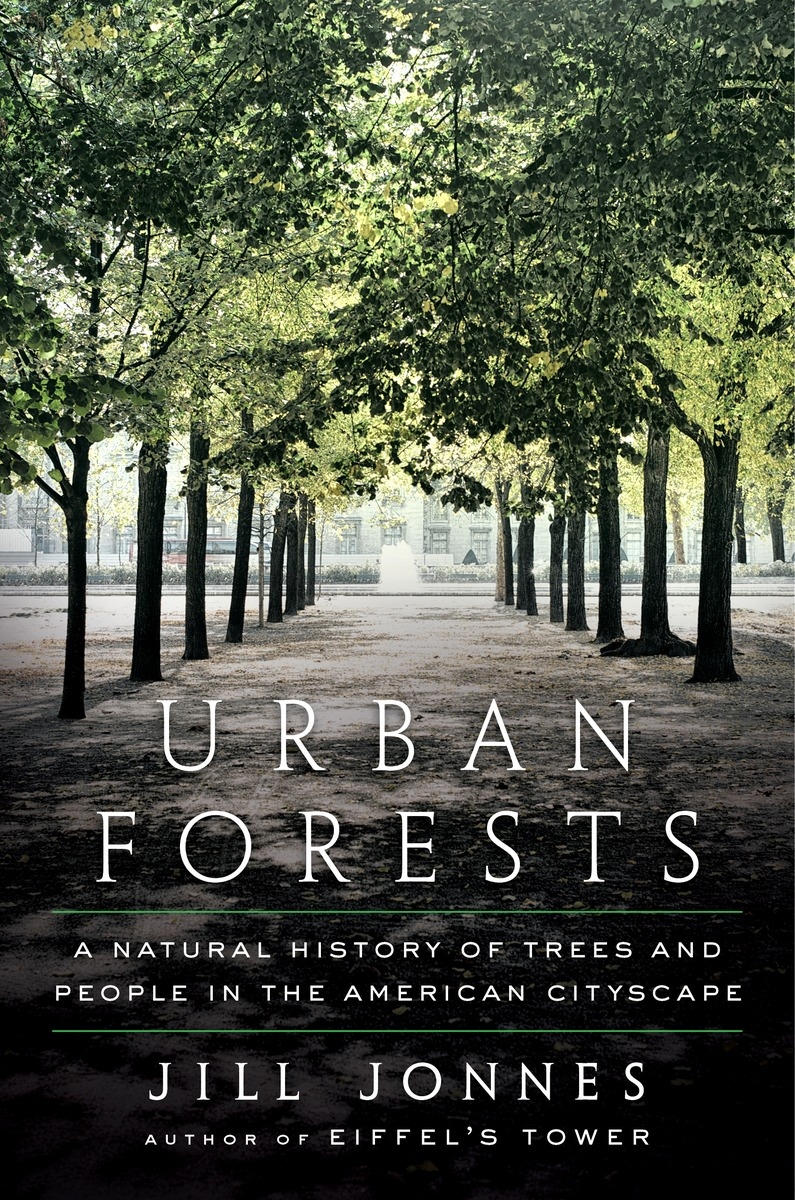 Urban Forests coloring of trees