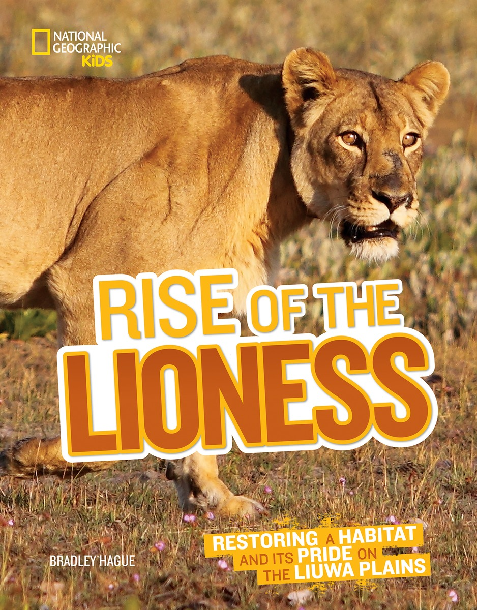 Rise of the Lioness to rise again at a decent hour