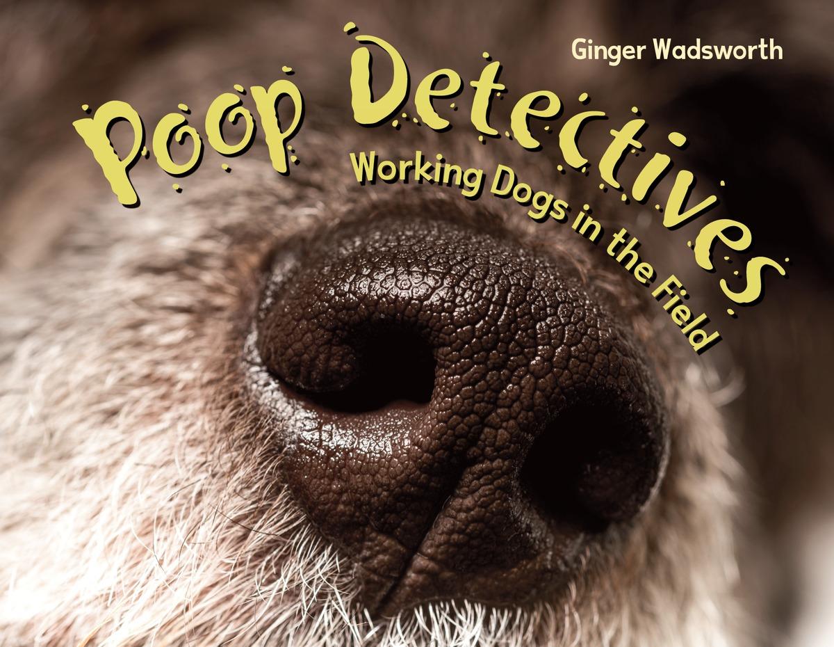 Poop Detectives sense and sensibility