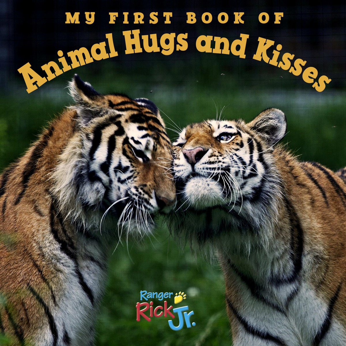 My First Book of Animal Hugs and Kisses (National Wildlife Federation) my first book of vehicles