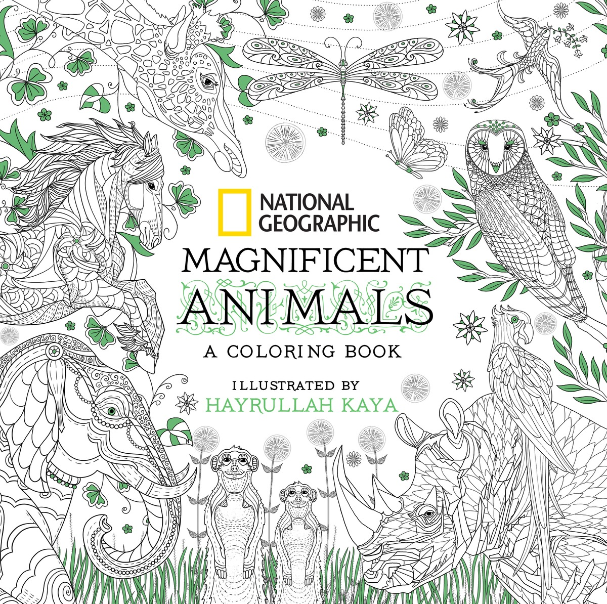 National Geographic Magnificent Animals: A Coloring Book color the classics anne of green gables a coloring book visit to avonlea