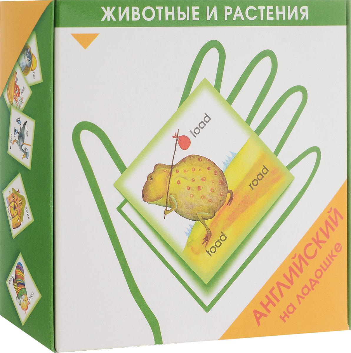 Маленький гений-Пресс Обучающая игра Английский на ладошке Животные и растения наборы карточек маленький гений удивительные приключения в лесу