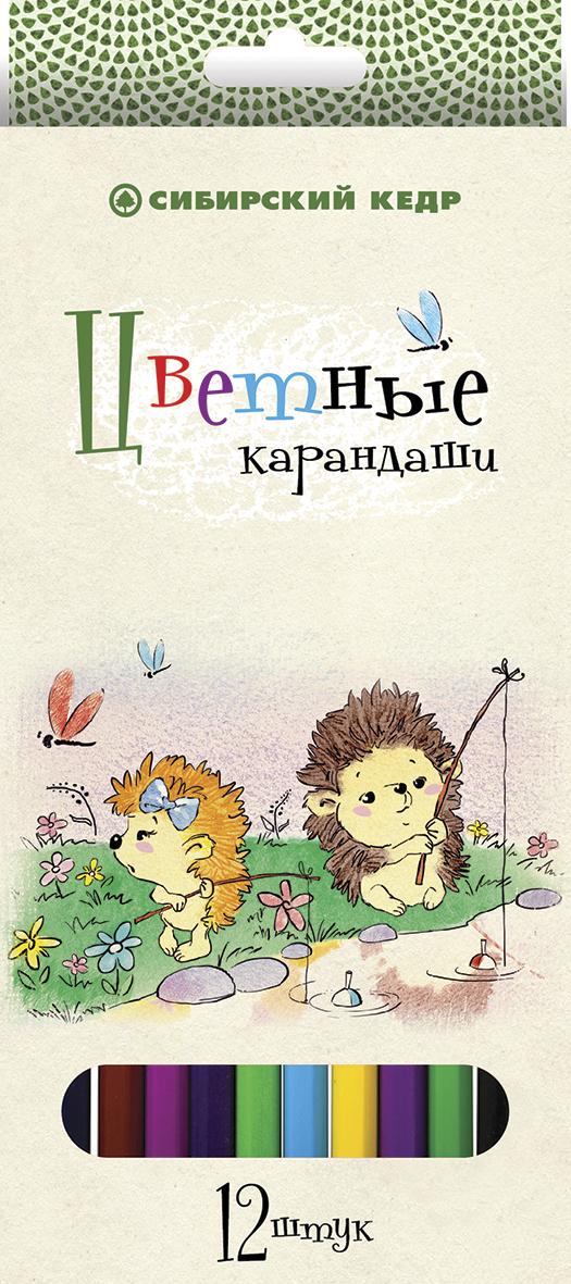 СКФ Набор цветных карандашей Сибирский кедр Ежик 12 шт