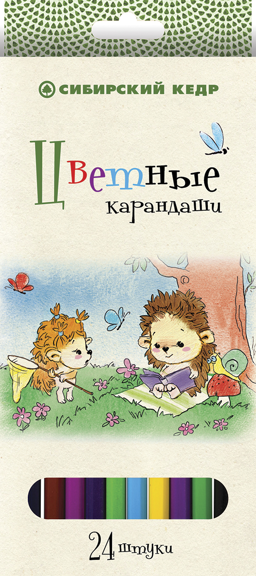 СКФ Набор цветных карандашей Сибирский кедр Ежик 24 шт