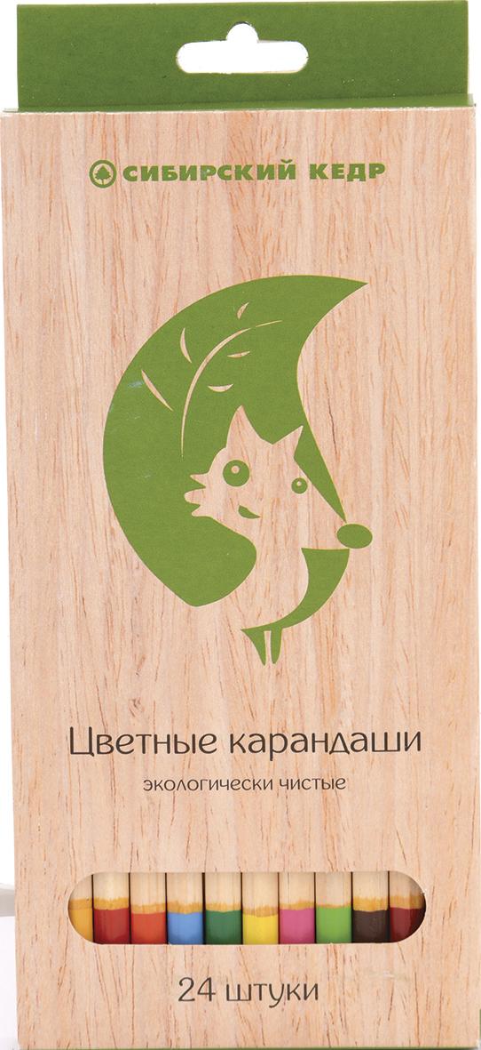 СКФ Набор цветных карандашей Сибирский кедр Eco 24 шт