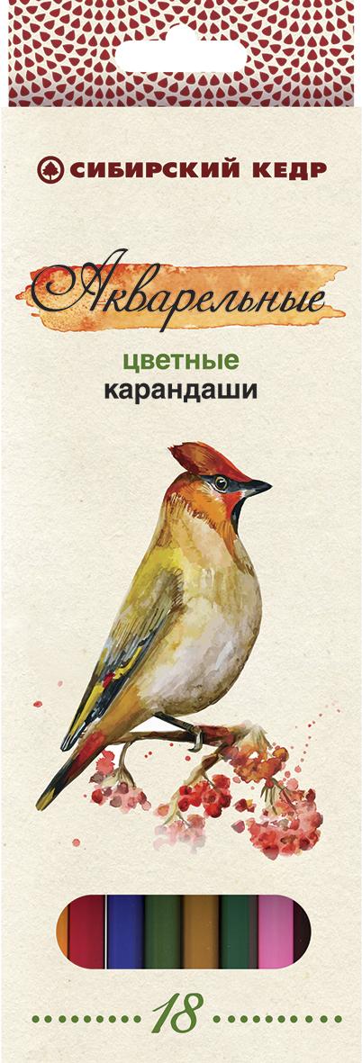 СКФ Набор акварельных карандашей Сибирский кедр Птицы Сибири 18 шт вот какой рассеянный