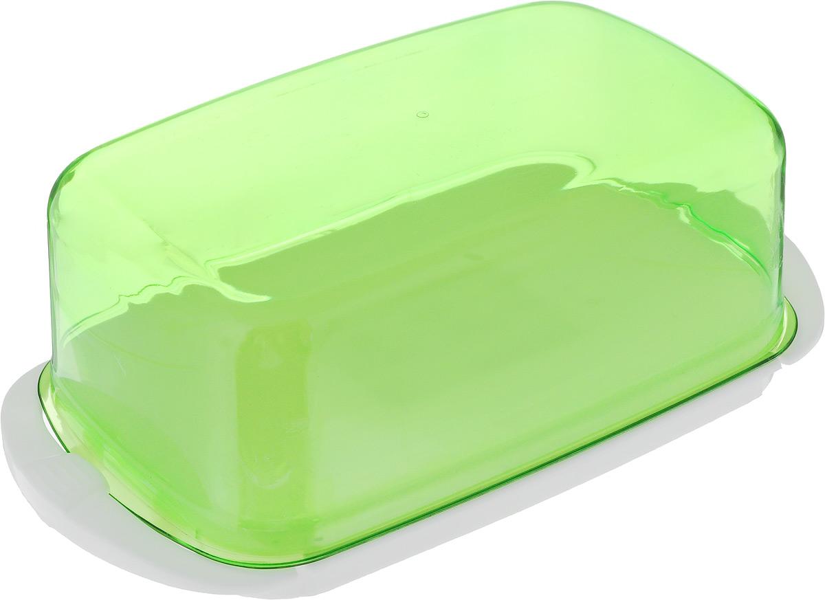 Масленка Giaretti, цвет: зеленый, белый, 18 х 9,5 х 6,5 смGR1451МИКС_зеленыйВеликолепная масленка Giaretti, выполненная из пластика, предназначена для красивой сервировки и хранения масла. Она состоит из подноса и крышки. Масло в ней долго остается свежим, а при хранении в холодильнике не впитывает посторонние запахи. Масленка Giaretti идеально подойдет для сервировки стола и станет отличным подарком к любому празднику.Размер подноса: 18 х 9,5 х 1 см.Размер крышки: 15,5 х 9,5 х 5,5 см.