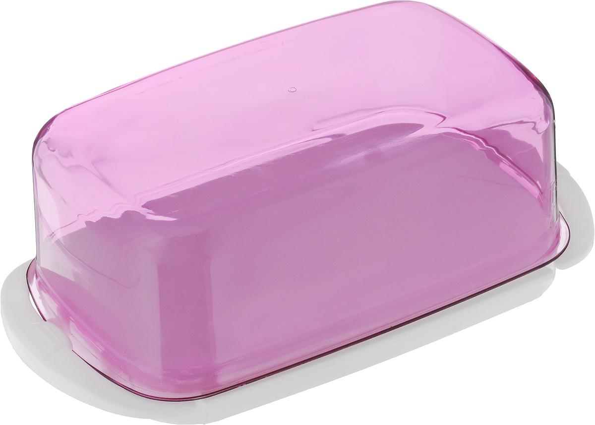 Масленка Giaretti, цвет: фиолетовый, белый, 18 х 9,5 х 6,5 смGR1451МИКС_фиолетовыйВеликолепная масленка Giaretti, выполненная из пластика, предназначена для красивой сервировки и хранения масла. Она состоит из подноса и крышки. Масло в ней долго остается свежим, а при хранении в холодильнике не впитывает посторонние запахи. Масленка Giaretti идеально подойдет для сервировки стола и станет отличным подарком к любому празднику.Размер подноса: 18 х 9,5 х 1 см.Размер крышки: 15,5 х 9,5 х 5,5 см.