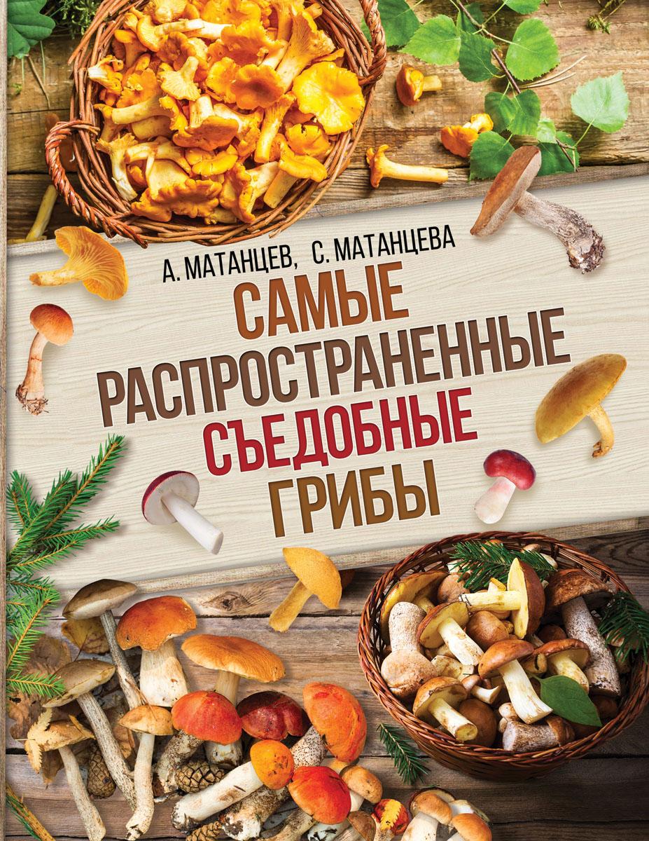 Самые распространенные съедобные грибы. А. Н. Матанцев,  С. Г. Матанцев