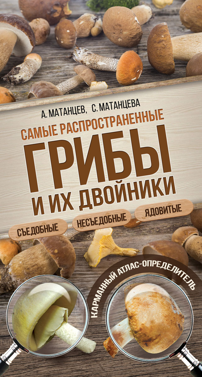 Самые распространенные грибы и их двойники. Съедобные, несъедобные, ядовитые. А. Н. Матанцев, С. Г. Матанцева