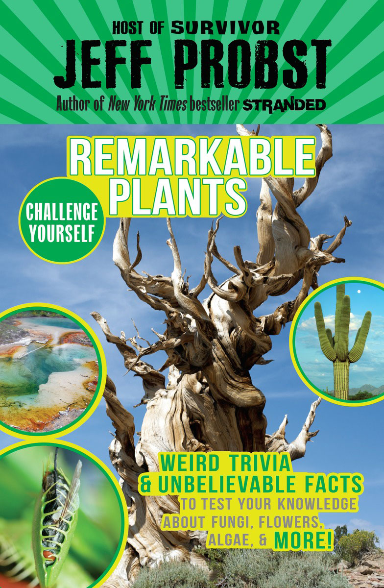 Remarkable Plants remarkable trees of the world