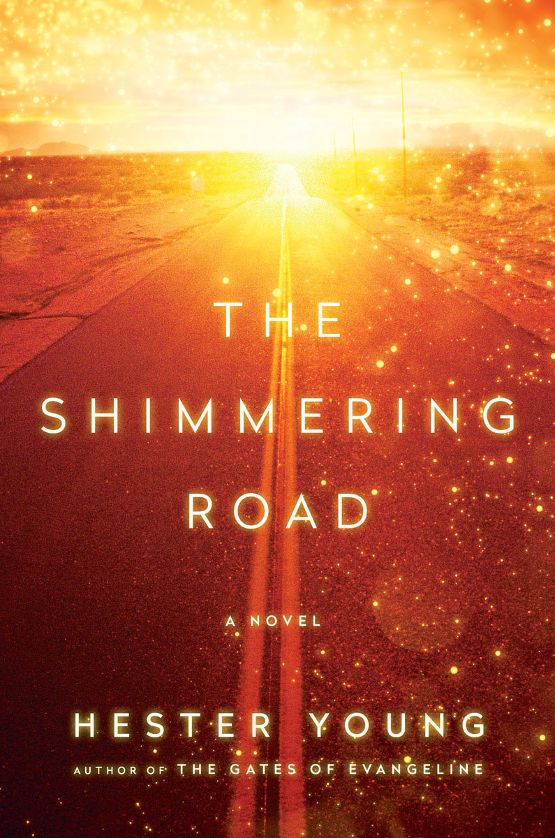 The Shimmering Road charlie chick learns to fly