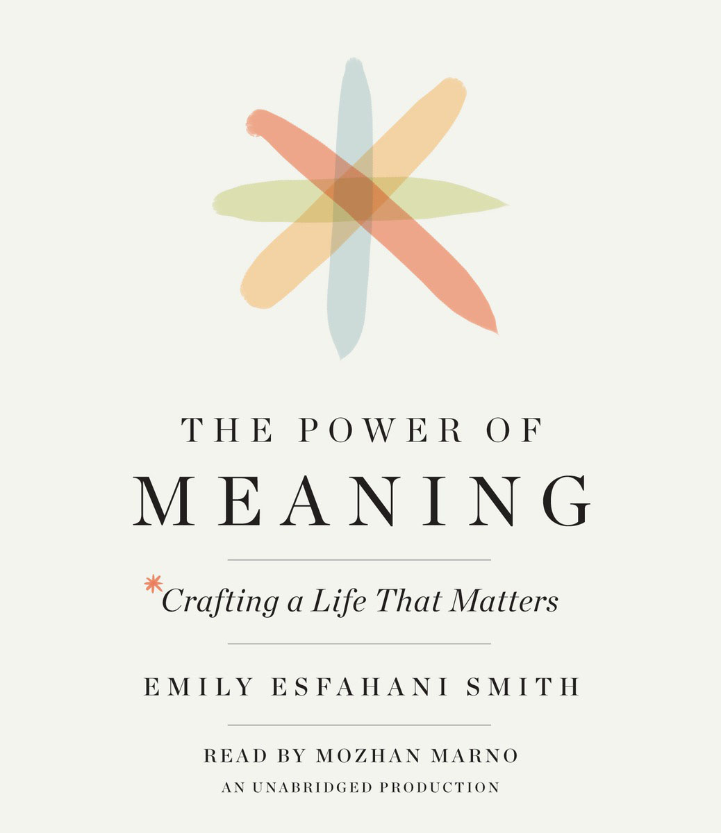 The Power of Meaning the meaning of voice to experienced nurses in magnet hospitals
