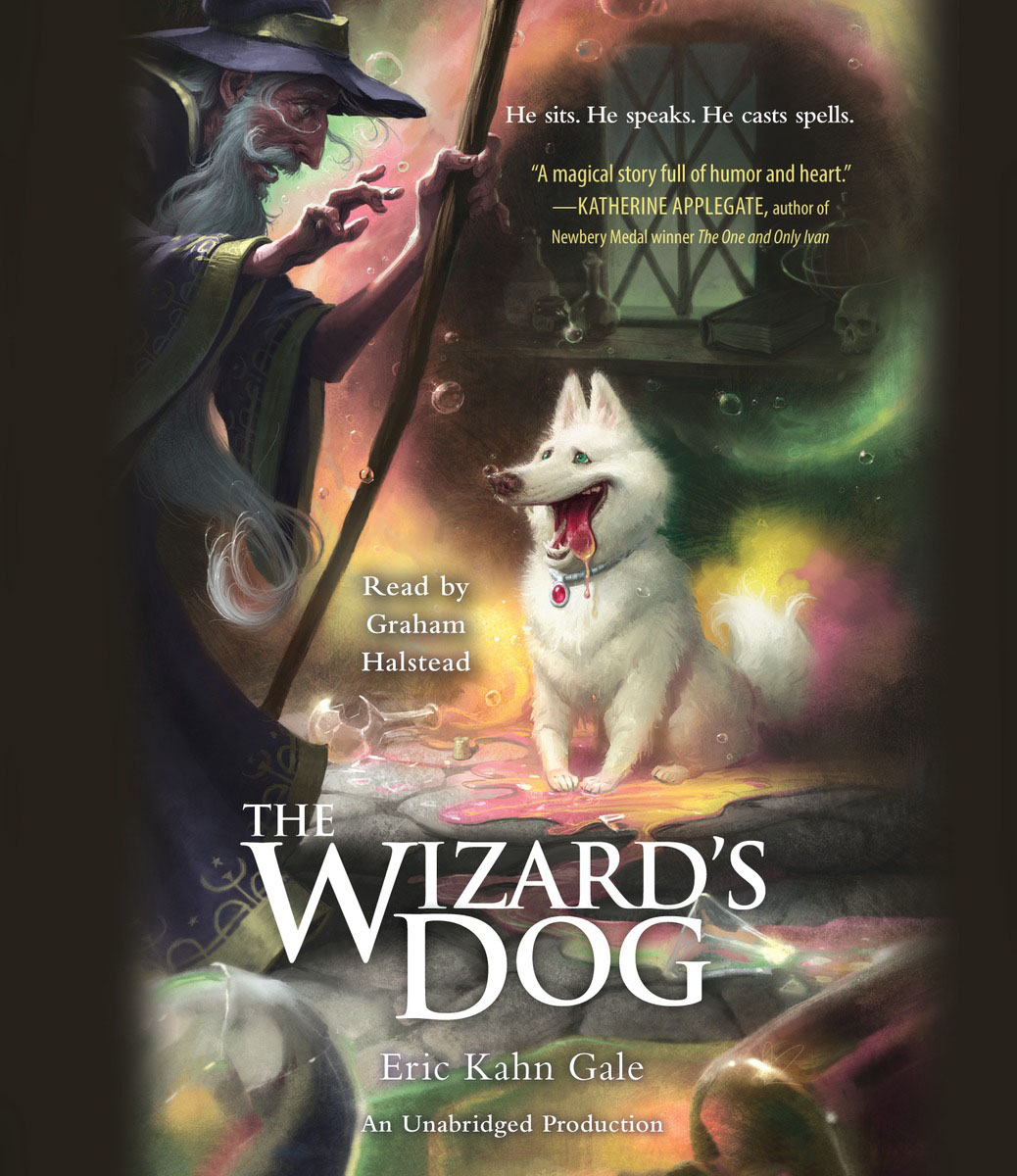 The Wizard's Dog king arthur and his knights