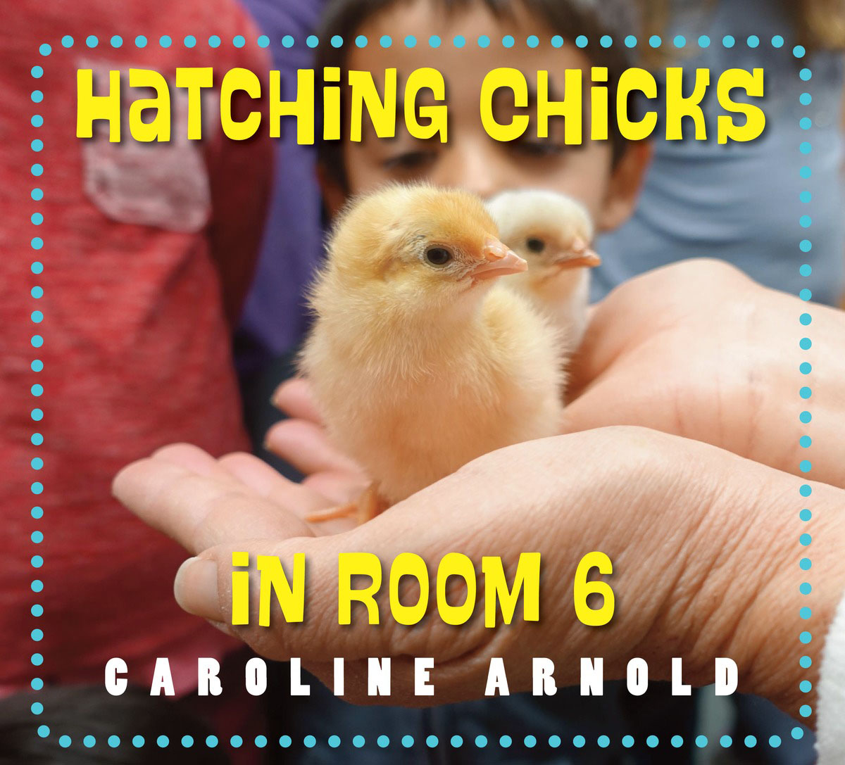 Hatching Chicks in Room 6 seeing things as they are