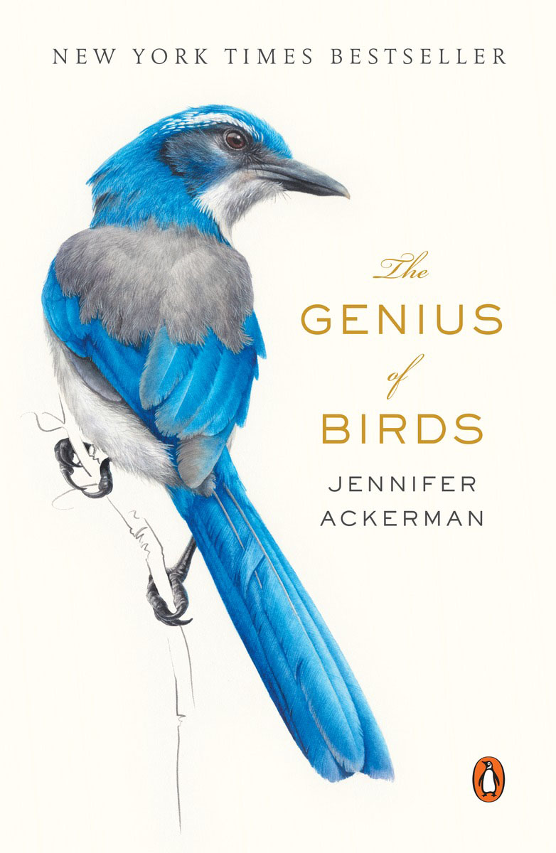 The Genius of Birds birds of prey