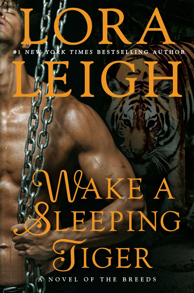Wake a Sleeping Tiger martinez