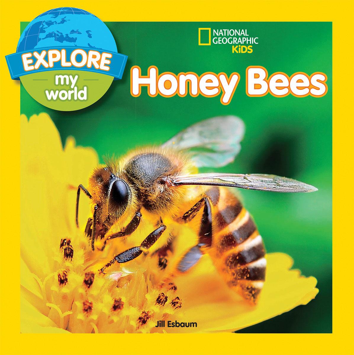 Explore My World: Honey Bees esbaum jill explore my world nighttime