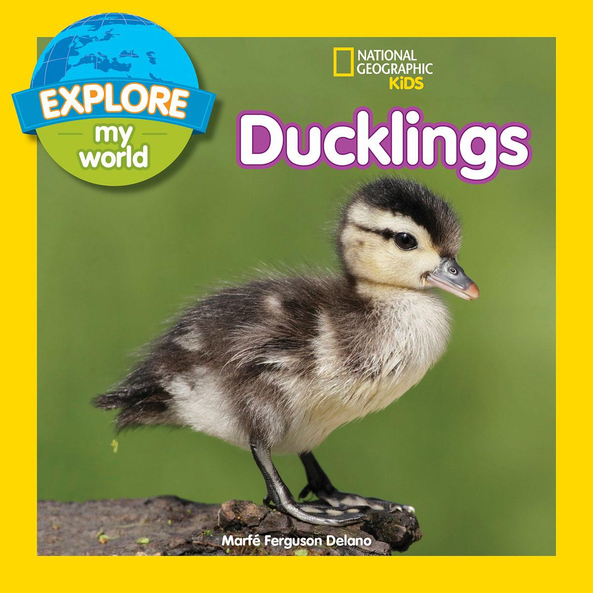 Explore My World: Ducklings esbaum jill explore my world nighttime